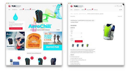 TechNiche online retail shop